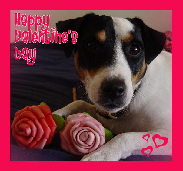 Roscoe Valentines